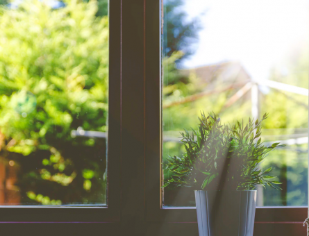 Lighten Up 4 Ways to Improve Your Home's Natural Light